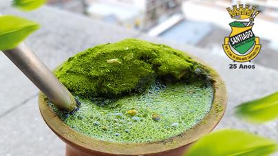 fatores influenciam no sabor da erva-mate